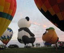 panda and beaver flying