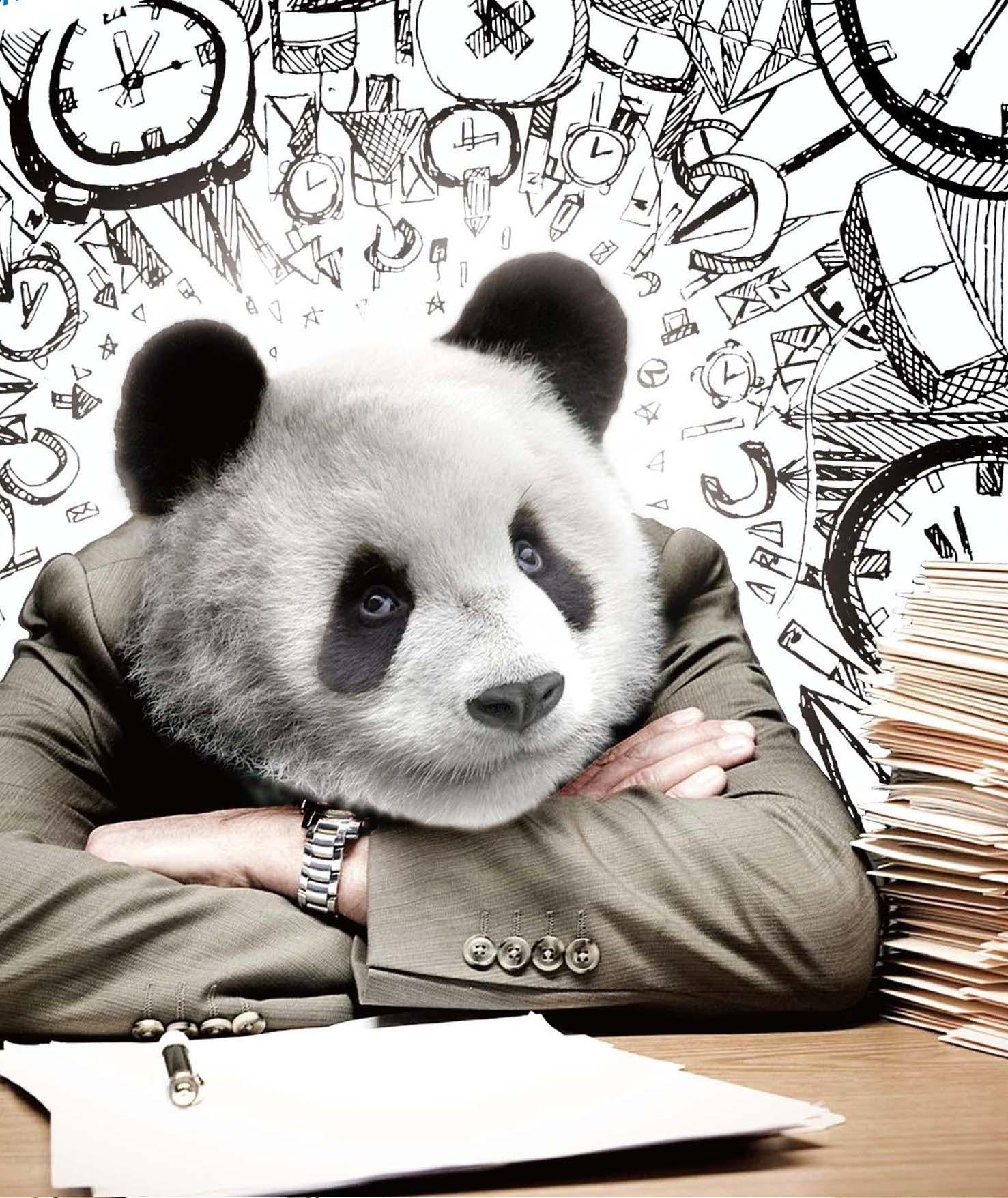 white collar panda