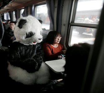 Panda on the train