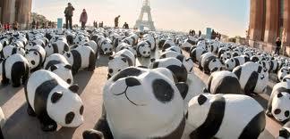 landscape of pandas