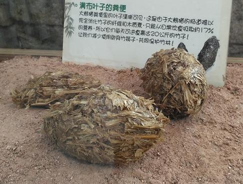 Cacca di panda